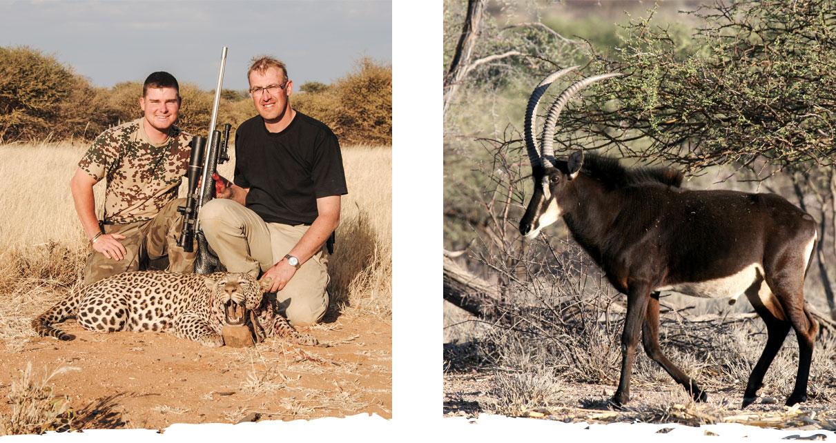 Jagen in Namibia auf der Okosongoro Safari Ranch - reife Trophäen