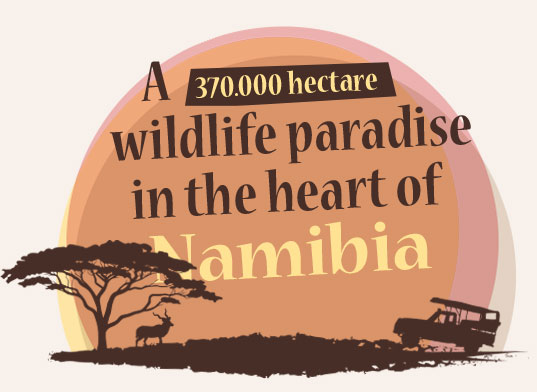 Okosongoro wildlife paradise in the heart of namibia